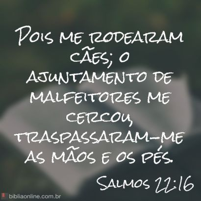 bibliaonline_sl_22_16