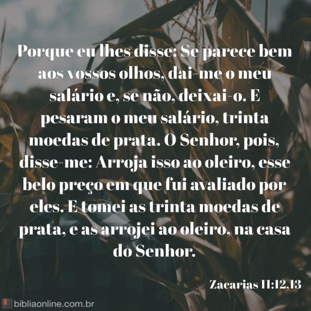 bibliaonline_zc_11_12,13