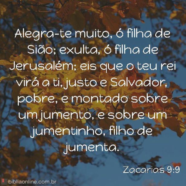 bibliaonline_zc_9_9